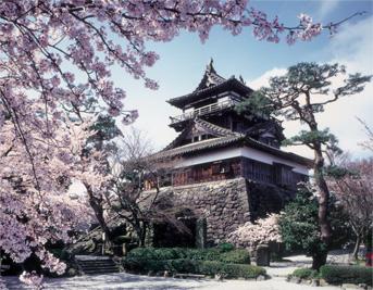 castle_spring